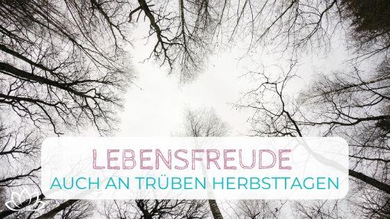 Lebensfreude an trüben Herbsttagen - 5 Schritte - Beitragsbild 3